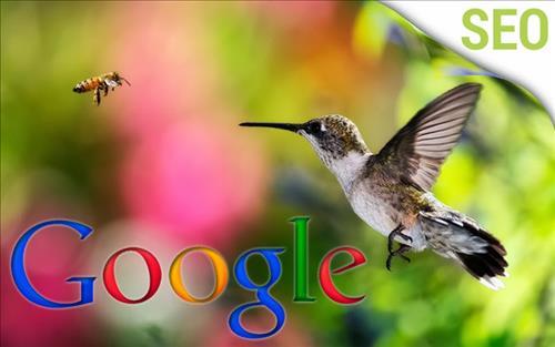 Thuật toán Chim ruồi (Hummingbird)