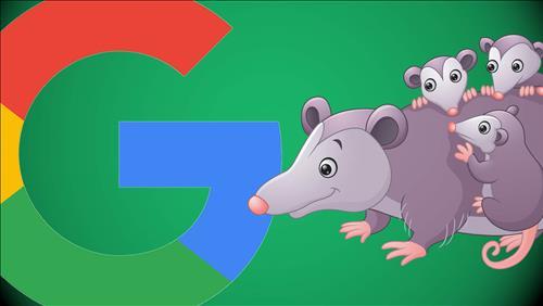 Thuật toán Google Possum: Tác động tới tìm kiếm địa phương Search Local