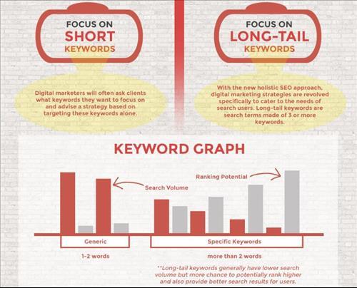 Biểu đồ từ khóa Short và Longtail keyword