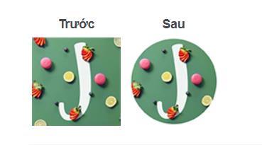 141041 kich thuoc avatar facebook circle