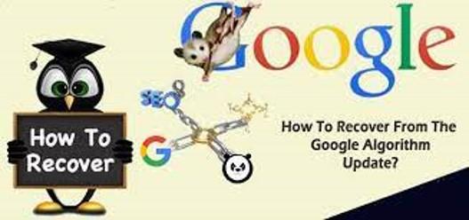 khôi phục sau update của Google