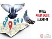 Thuật toán Google Pigion: Chim bồ câu tác động tới tìm kiếm địa phương