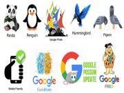 Thuật toán Google: Tổng hợp 9 thuật toán lõi của Google
