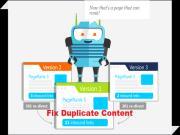 Duplicate Content: Cách xác định và khắc phục Nội dung trùng lặp