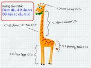 Structured Data là gì? Hướng dẫn đánh dấu và kiểm tra dữ liệu có cấu trúc cho trang web (7 bước)